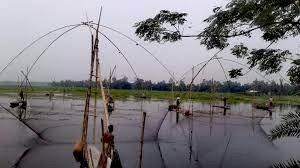 কালের গহ্বরে হারিয়ে যাচ্ছে গ্রাম বাংলার ঐতিহ্য মাছ ধরা